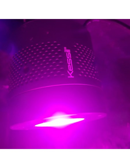 Kessil H380 Refugium Macroalgae LED Grow Light