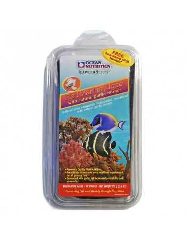 Ocean Nutrition Seaweed Red Marine Algae free Clip