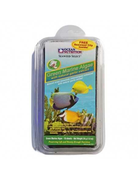 Ocean Nutrition Seaweed Green Marine Algae free Clip