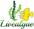Livealgae UK - Clean Macroalgae